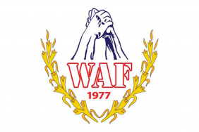 World Armwrestling Federation disqualifies Georgian Armwrestling Federation