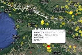 სოფელ სამებასთან 4.5 მაგნიტუდის სიმძლავრის მიწისძვრა მოხდა